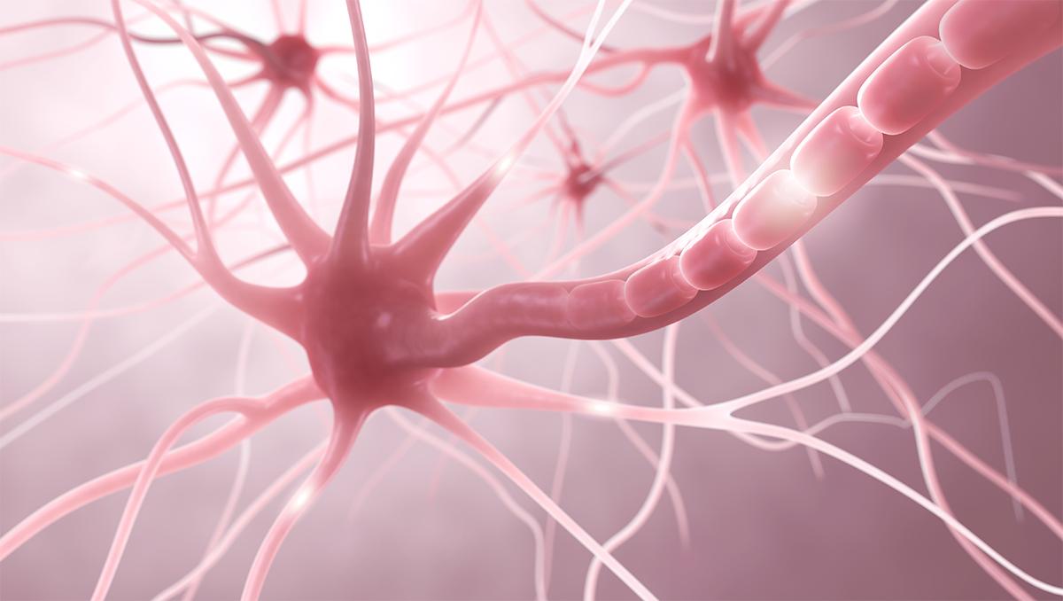 maladies auto immunes et activites physiques